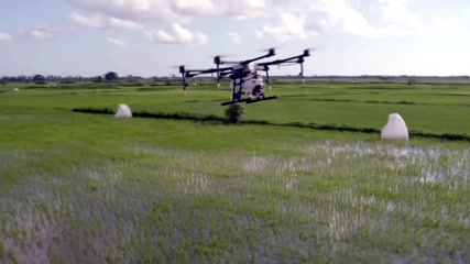 Mosquito-drowning drones: the latest weapon against malaria