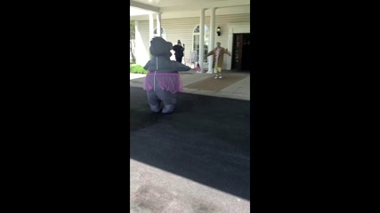 Woman wears hippo suit to safely hug mother in nursing home